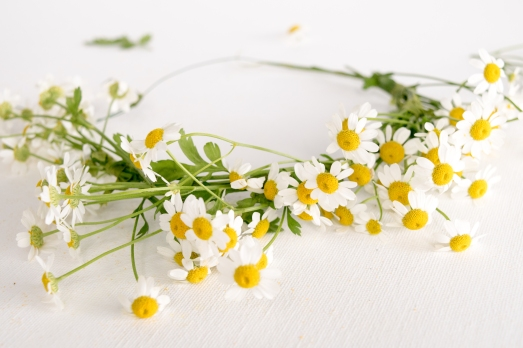 DIY-Fresh-Flower-Crown-17