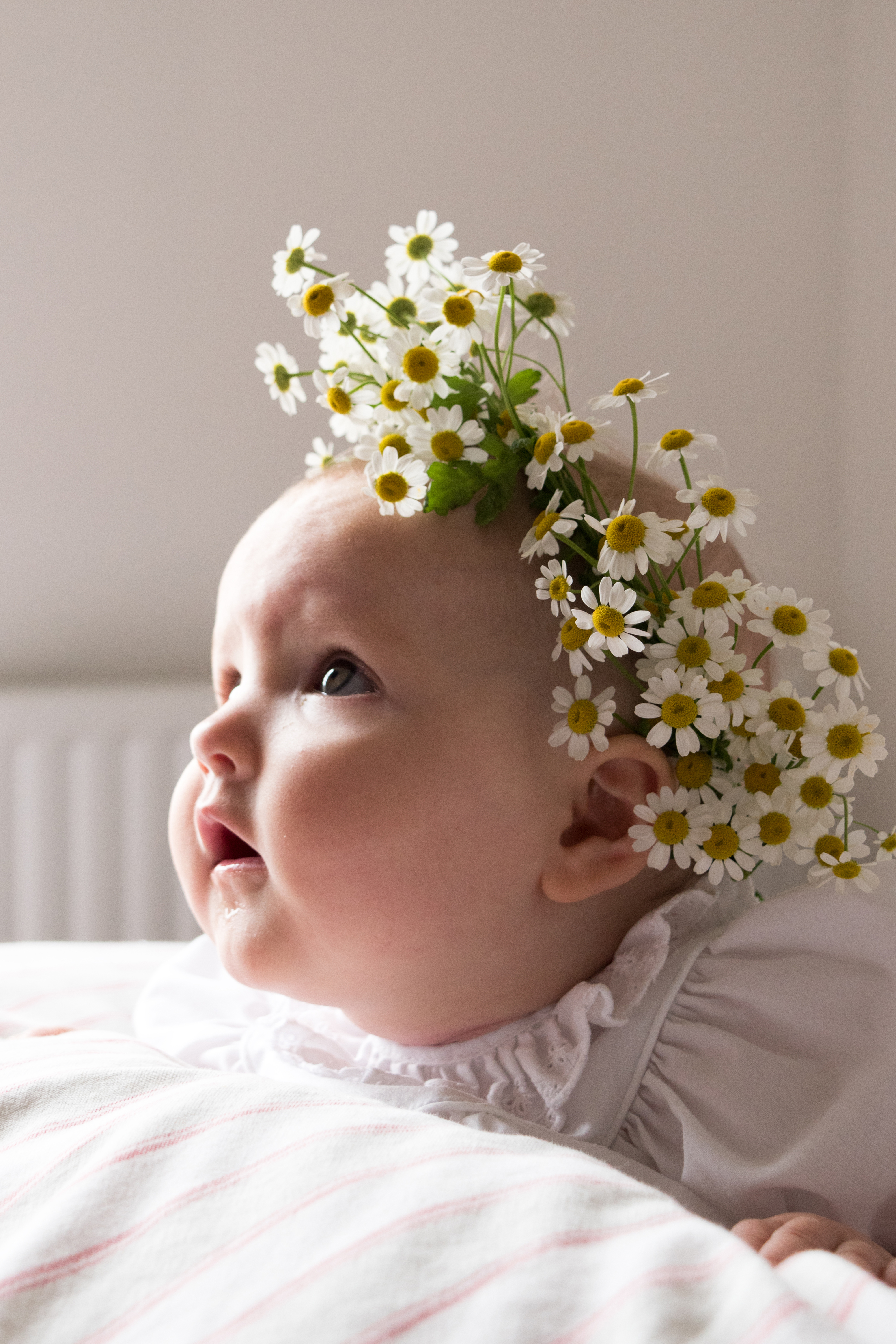 DIY-Fresh-Flower-Crown-22