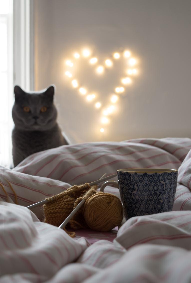Cosy-Knitting-Cat-Fairy-Lights