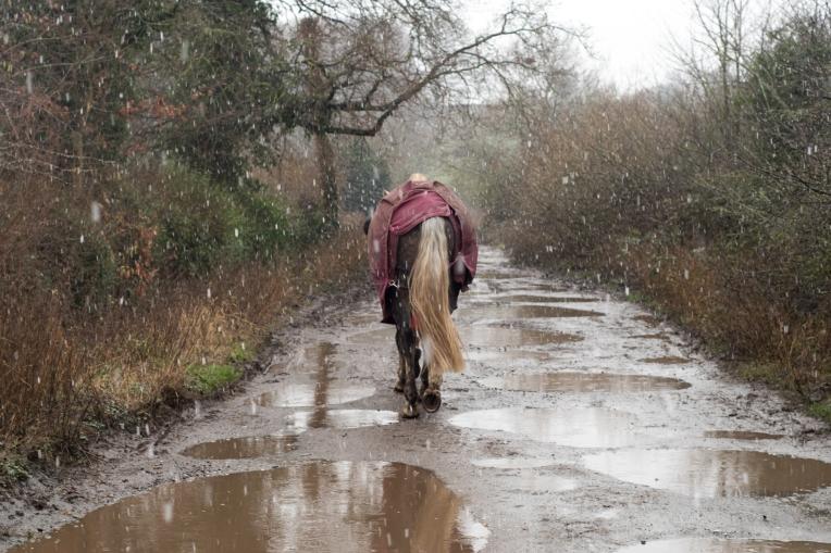 Muddy-walk